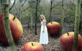 Picture forest, girl, apples