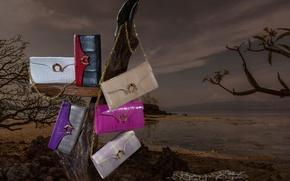 Picture snake, concept, snake, trees, sea, exotic, crocodile, commercial, skins, advertising, handbags, daks, handbags