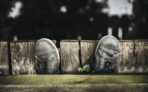 Picture background, shoes, macros