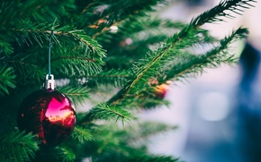 Picture needles, toy, tree, ball
