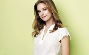 Picture look, actress, blonde, the series, Emily VanCamp, the everwood