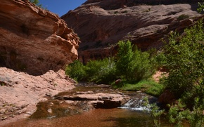 Picture summer, canyon, Utah, country's best cool