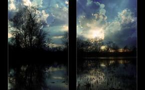 Wallpaper Trees, The sky, Anda Bereczky 2006, Clouds
