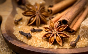 Picture sticks, sugar, cinnamon, carnation, bowl, spices, spices, star anise, Anis, star