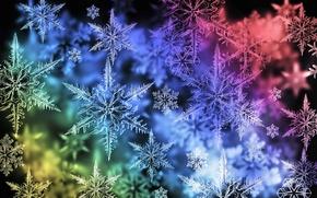 Picture snowflakes, color, range