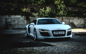Picture Audi, white, gold, with, full, wrap,  matte, 3M1080, r8