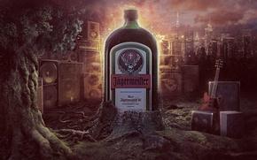 Picture jagermeister, liqueur, FIELD.alcohol