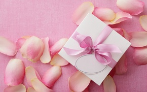 Wallpaper love, gift, roses, love, rose, heart, pink, romantic, Valentine's Day, petals, delicate