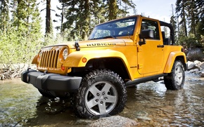 Picture stones, Wrangler, Ringler, Jeep, Rubicon, trees, Ford, Rubicon, Jeep, water, the front, SUV, forest