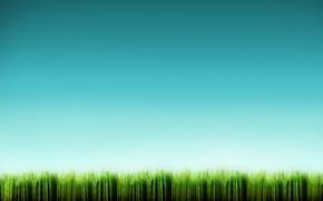Wallpaper blue, minimalism, Grass
