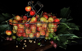 Picture leaves, berries, basket, still life, gooseberry, cherry