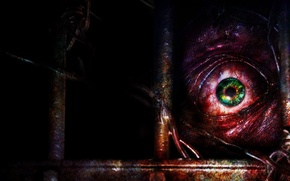 Picture Look, Eyes, Vienna, The pupil, Capcom, Resident Evil Revelations 2