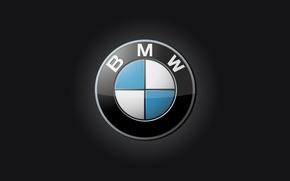 Picture machine, logo, BMW, carbon
