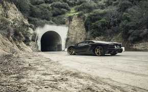 Picture Lamborghini, Tuning, LP700-4, Aventador, Mansory, Supercar, Wheels, Rear, RDB LA Matte, Savini