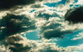 Picture the sky, freedom, clouds, nature