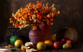 Picture flowers, photo, picture, fruit, Still life