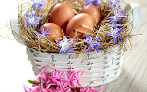 Picture flowers, basket, eggs, spring, Easter, flowers, spring, eggs, easter, delicate, basket, pastel