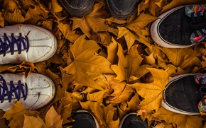 Picture autumn, leaves, fall, feet