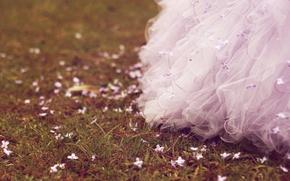 Picture grass, flowers, dress, Grass, Dress