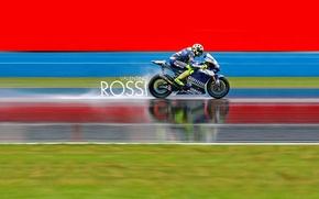 Picture race, motogp, Motorsport, championship, valentino rossi