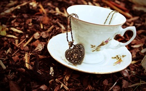 Picture autumn, leaves, stones, heart, dry, Cup, pendant, chain, saucer, suspension