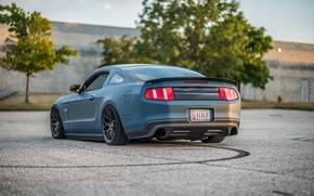 Picture lights, ass, Mustang, Ford, Road, drives, blue, foot