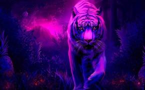 Wallpaper tiger, grass, time