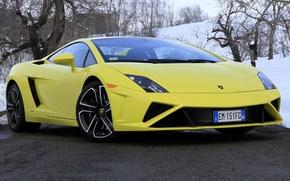 Picture machine, Lamborghini, supercar, Gallardo, the front, LP560-4
