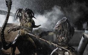 Wallpaper fiction, predator, monster, fight, horror