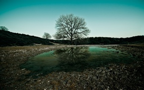 Picture the sky, water, landscape, nature, tree, widescreen, the evening, trees, landscape, water, nature wallpspers