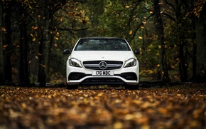 Picture autumn, white, leaves, Mercedes-Benz, Mercedes, AMG, AMG, A-class, W176