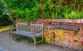 Picture Nature, Flowers, Strada, Lindsey, Bench, The Street, Sorin Ochea Photohraphy, Flori, Banca