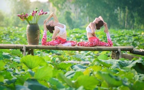 Picture summer, leaves, nature, girls, gymnastics, yoga, legs, Asian girls