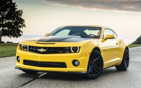 Picture road, the sky, yellow, tree, Chevrolet, Camaro, Chevrolet, Camaro, the front, Muscle car, Muscle car, …