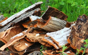 Picture wood, different, trova