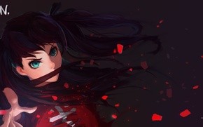 Picture look, girl, hair, art, Anime, Anime, Fate/Zero, Rin Toosaka, Fate/stay