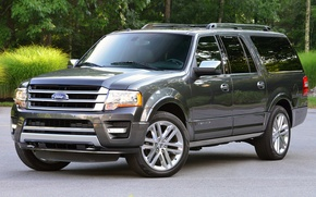 Picture Ford, expedition, platinum