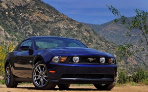 Picture mustang, ford, car. goodlife