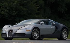 Picture veyron, bugatti, gray