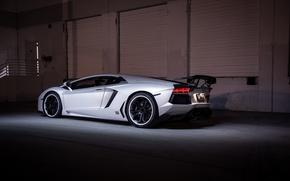 Picture white, shadow, white, lamborghini, rear view, headlights, aventador, lp700-4, Lamborghini, aventador, wing, black rims