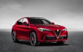 Picture Alfa Romeo, SUV, Alfa Romeo, Four-leaf clover, Stelvio
