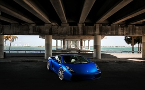 Picture the sky, blue, bridge, palm trees, Lamborghini, Gallardo, Lamborghini, blue, Lamborghini, the front part, Gallardo, …