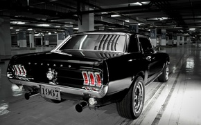Picture Mustang, Ford, Muscle Car