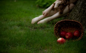 Picture grass, girl, macro, photo, background, basket, apples, blur