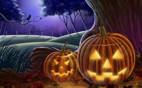 Wallpaper owl, pumpkin, Halloween, halloween