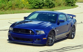 Picture Mustang, Ford, Mustang, Ford, 2013, GT4, Kenny Brown