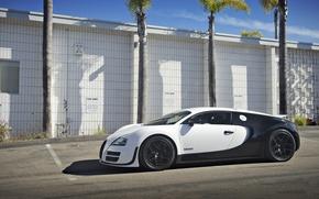 Picture Bugatti, Veyron, Super, Sport, Price, Blanc, Pur