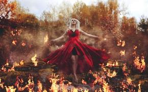 Picture fire, flame, phoenix, alight