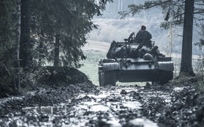 Picture road, forest, tank