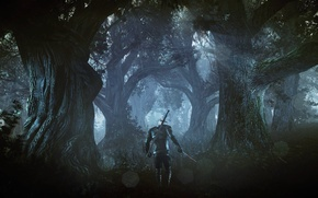 Picture The Witcher, The Witcher, Geralt, CD Projekt RED, The Witcher 3: Wild Hunt, Geralt, The …
